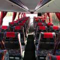 Билеты на автобус в/из Санкт-Петербург
